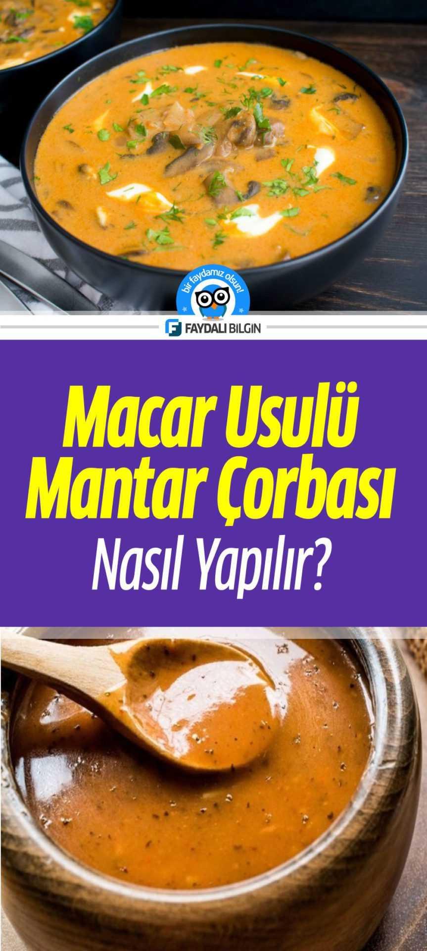 Macar Usulü Mantar Çorbası Tarifi - Nasıl Yapılır?