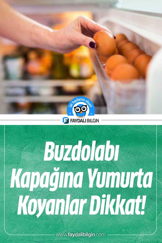 Buzdolabı Kapağına Yumurta Koyanlar Dikkat!