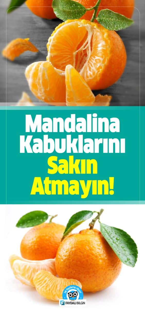 Mandalina Kabuklarının Faydalarını Okuyunca kabukları artık atmayacaksınız. Faydalı Bilgin Editörlerimiz Sizin İçin Araştırdı. #mandalina #mandalinakabukları #faydalıbilgiler