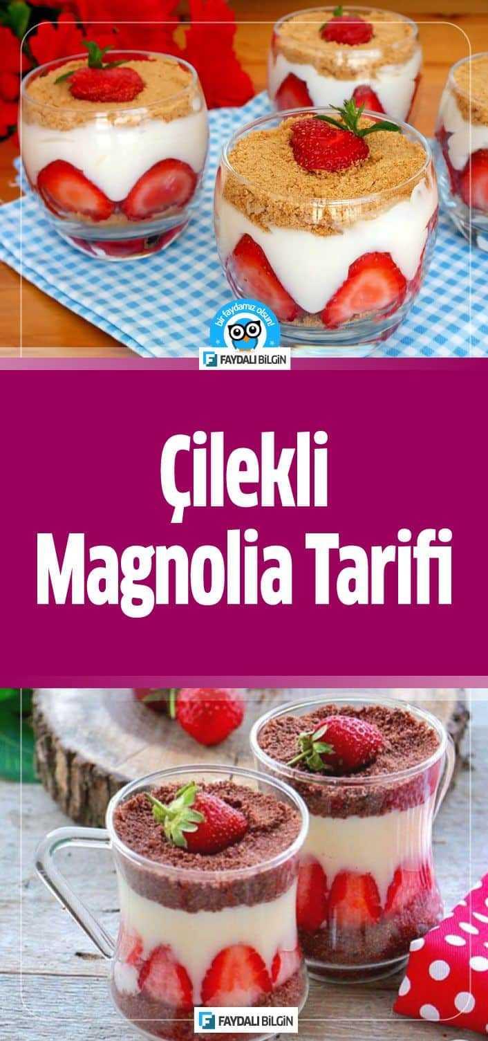 Çilekli Magnolia Tarifi Nasıl Yapılır?