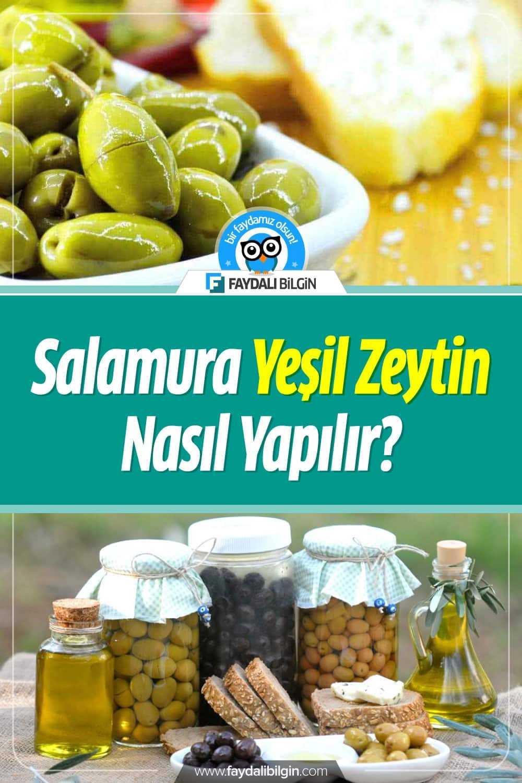 Zeytin Salamura, Zeytin nasıl tuzlanır? Kırma ve Çizme Zeytin nasıl yapılır? Detaylar video haberimizde. #zeytin #salamura #yeşilzeytin #nasılyapılır