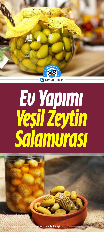 Yeşil Zeytin Salamura Nasıl Yapılır?