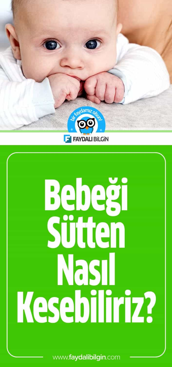 Bebeği Sütten Nasıl Kesebiliriz