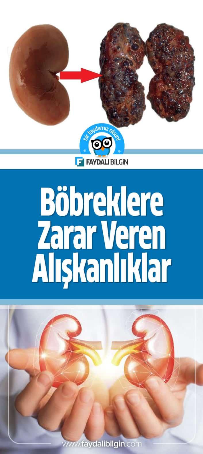 Böbreklere zarar veren ve böbrekleri bitiren genel sağlığınız için tehlike oluşturan alışkanlıkları sizin için derledik. #böbrek #böbrekler #sağlık #zararları