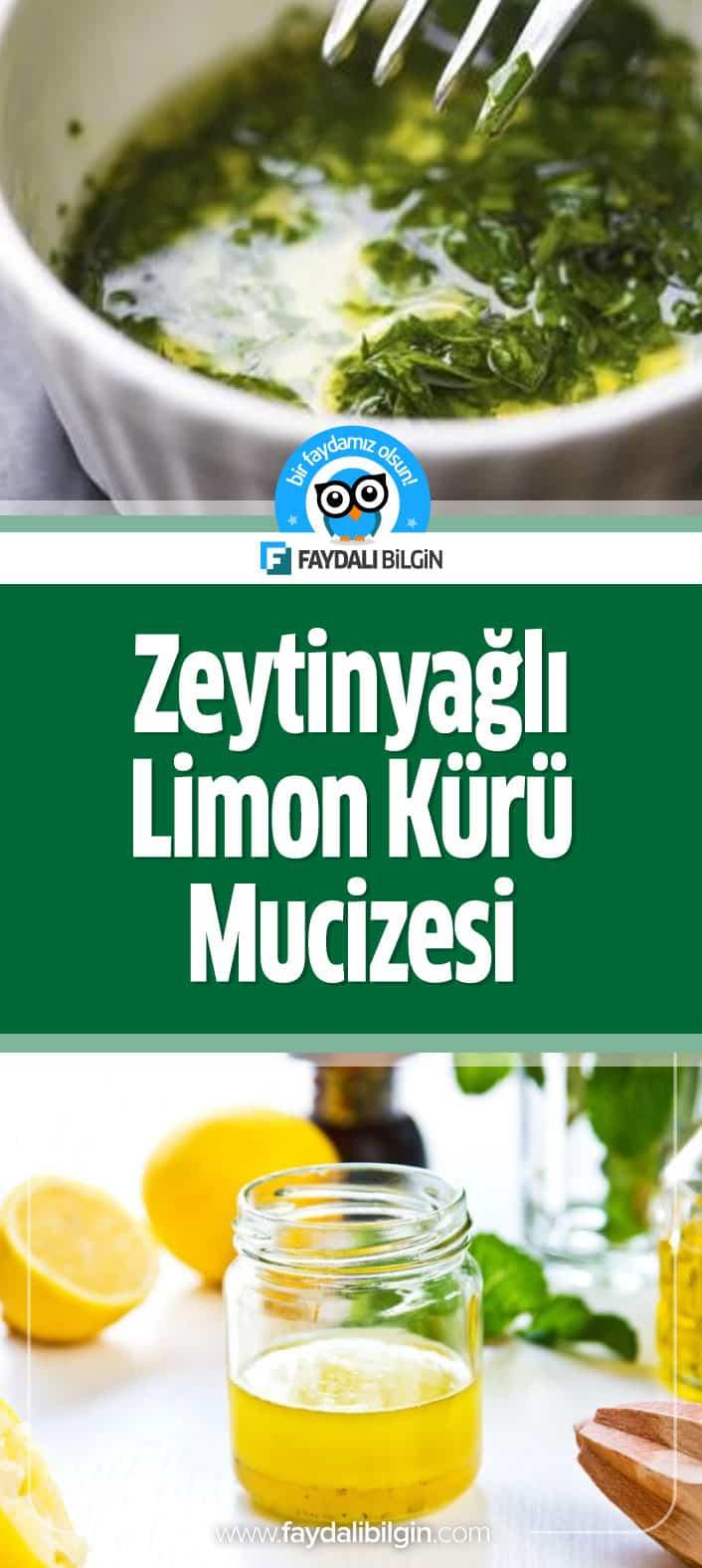 Zeytinyağlı Limon Kürünün Faydaları
