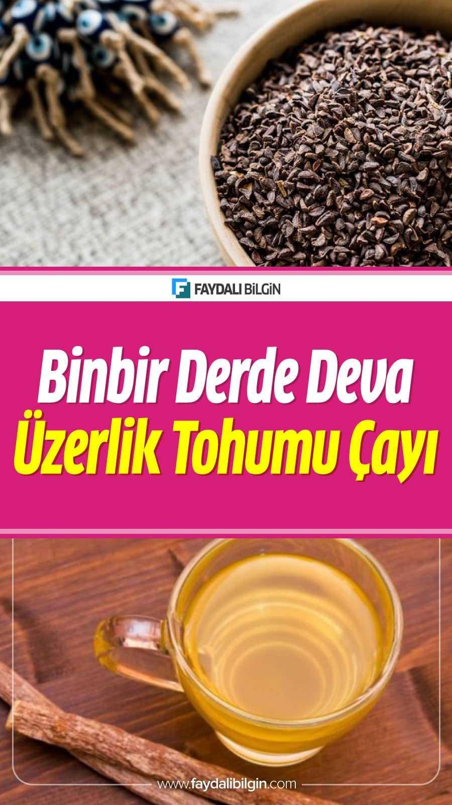 Üzerklik Tohumunun Faydaları, Kullanımı ve Üzerklik Tohumu çayı tarifi. İşte Üzerklik otu hakkında tüm detaylar haberimizde.