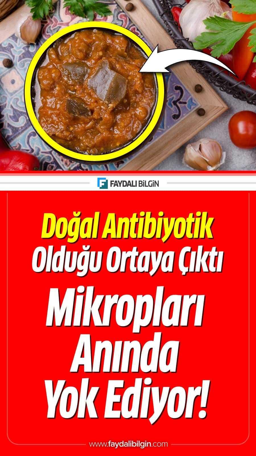 Doğal Antibiyotik özelliği olan Besinler