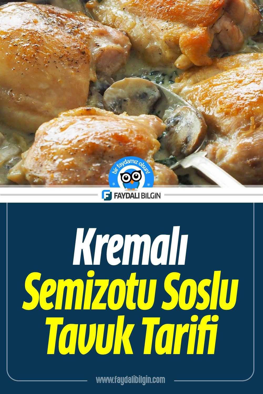 Kremalı Semizotu Soslu Tavuk Tarifi